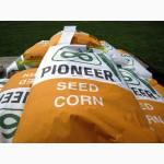 Гибрид кукурузы ПР39Ф58 ФАО270 (Пионер)
