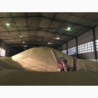 Реализуем амурскую сою ГОСТ от производителя (урожай 2018 г) в неограниченном количестве