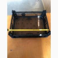 Ящик для клубники новый. Высота 110 мм