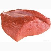 Мясо говядины оптом от 100 кг. Доставка по Москве, МО, РФ