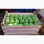 КРЫМ.ящики шпоновые для упаковки яблок от компании Крымагротара