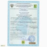 Семена кукурузы РОСС 140 (от производителя прямой договор)