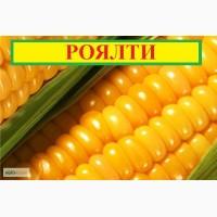 Семена сахарной кукурузы Роялти