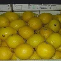 Лимоны из Марокко