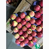 Яблоки Турция