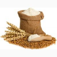 Мука пшеничная первый сорт хлебопекарная