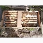 Пакеты для перевозки пчел