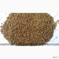 Продам: Семена люцерны Вега-87