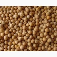 Семена нута Приво-1, Бонус, ЭС, РС1