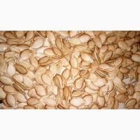 Семена тыквы Мускат де Прованс