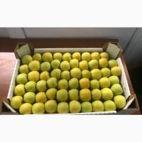 Яблоки оптом Айдаред, Голден, Гренни Смит и другие сорта