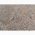 Продам пшеницу фуражную Рязанская область