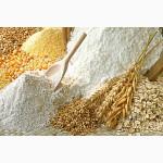 Мука пшеничная ГОСТ от производителя