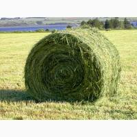 Консервант для сенажа Заготовка сенажа