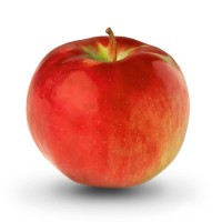 Яблоко садовое Кортланд, зимний сорт
