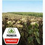 Гибриды семян подсолнечника Пионер ПР64Х32