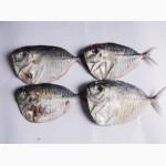 Рыба вяленая, рыба сушеная, сушёные морепродукты, мясо, весовые снеки, закуски к пиву