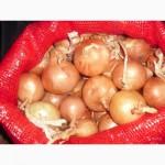Овощная Турецкая сетка
