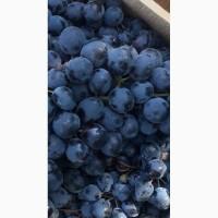 Виноград с косточкой белый и черный