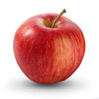 Яблоко садовое Пепин шафранный, осенний сорт