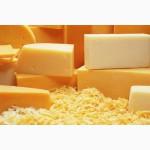 Сыры полутвердые 50% жирности. Оптом