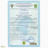 Семена кукурузы Краснодарский 291 (договор с производителем)