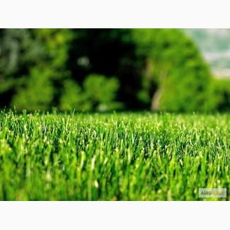 Изготовление газонной травосмеси