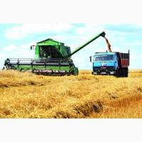 Содействие фермерам и КФХ