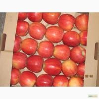 ООО Сад-Гигант продает Российские яблоки