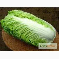 Покупаю салаты и др. зелень