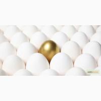 Яйцо куриное диетическое CO-C1-C2-CB++( бел+кор) Деревенское