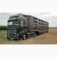 Перевозка Скота животных КРС
