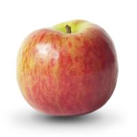 Яблоко садовое Жигулёвское, осенний сорт