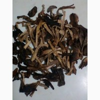 Продам сушеные грибы, соленые грибы
