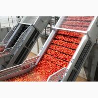 Продажа томатной пасты оптом в бочках, высокого качества
