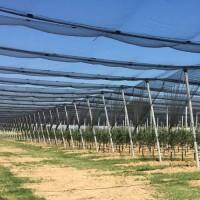 Противоградовые сетки и системы. Проекты и поддержка