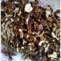 Белые грибы сушеные оптом