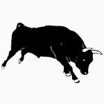ООО Алтайские Бычки. Реализует бычков, телок