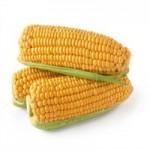 Продаём кукурузу