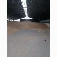 Продам пшеницу Фураж