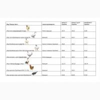 Инкубационные яйца: кур несушек, бройлеров, уток, индейки и прочих