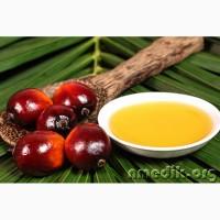 Продам масло пальмовое