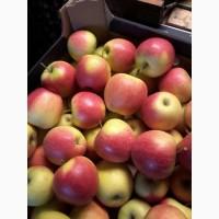 Яблоки отборные, красных сортов