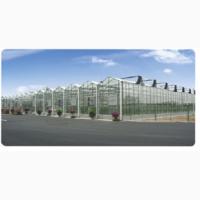 Производим и поставляем промышленные и фермерские теплицы