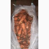 Морковь 2 сорта оптом