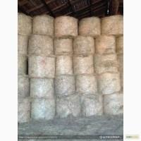 Продам Сено, солому, силос кукурузный, сенаж (с доставкой и с места)