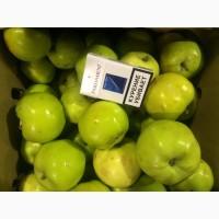 Яблоки оптом от 35р/кг. Производитель