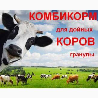 Комбикорм для дойных коров КК-60/1