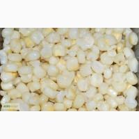 Зерно белой кукурузы из Бразилии/Аргентины. 100% генетически НЕ манипулированный продукт