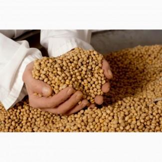 Семена сои Канадский трансгенный сорт WHITBY